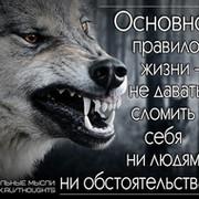 Игорь Бобков on My World.