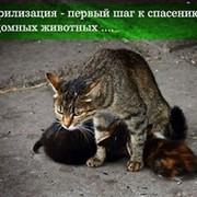 Глаша  Сидорова on My World.