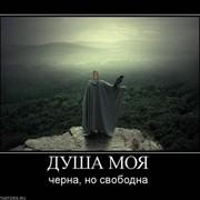Алексей Чистохин on My World.