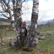 Елена Веселкова on My World.